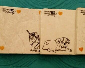 Bull Dog Puppies Coasters