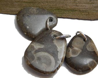 Polished Petoskey Stone Pendants, Drilled beach stone, Genuine Lake Michigan Fossils, up north treasures, rustic artisan jewelry supply