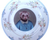 SALE - Damaged - Juliet Ferret School Portrait - Altered Vintage Plate 8.65""