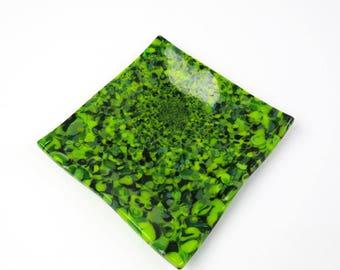 Duckweed Green Fused Glass Dish
