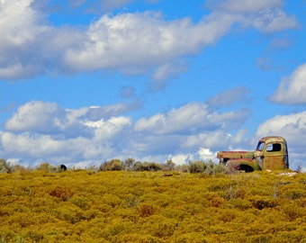 Old Abandoned JunkYard Truck Pickup - vintage memorabilia Rusty Green gold farm Truck in Summer New Mexico field giclee photograph