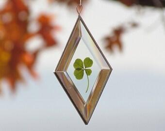 Genuine Four Leaf Clover Glass Suncatcher Unique Botanical Ornament Gift Idea Handmade in Canada