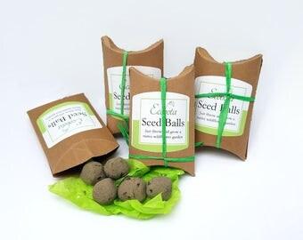 East Coast Native Wildflower Seed Balls - DIY Bee Garden, Butterfly Garden - Plants for Pollinators - Seed Bombs - Garden Gift