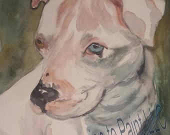 Watercolor Art white dog painting blue eye brown eye pitbull Print reproduction angel dog