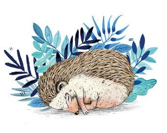 Hedgehog  // A5 Print 5x8