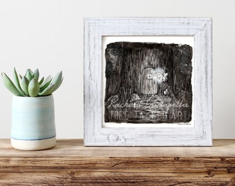 Hidden Fairy Forest Illustration - Giclee Fine Art Print - Pen and Ink Illustration - Fairy House Painting Illustration