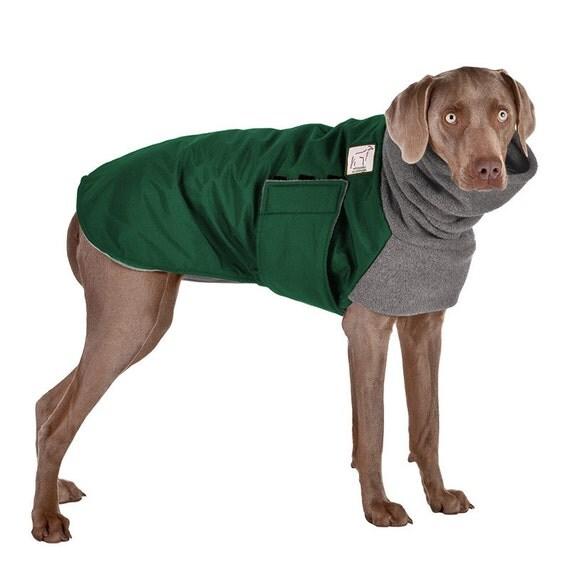 WEIMARANER Winter Dog Coat, Dog Coat, Winter Coat, Dog Clothing
