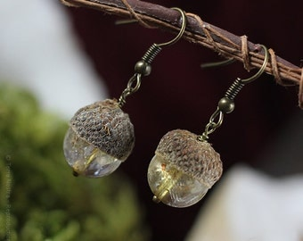 "Acorn earrings ""Automnal"" - Real acorns and citrine beads"