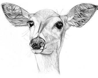 Deer art print drawing doe deer illustration poster black and white A3 size