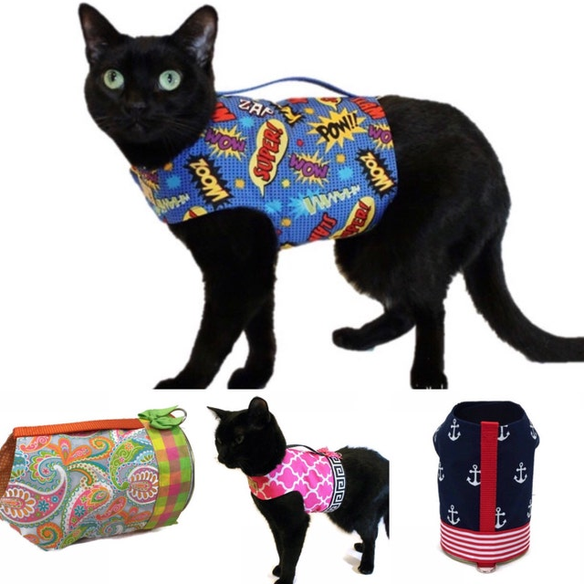 How to choose a cat harness