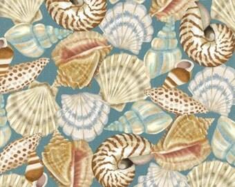 Studio E - Seaside Dreams by Sharla Fults - Packed Shells