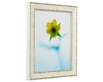 Craig Frames, 24x30 Inch Weathered Off-White Picture Frame, Marea (106432430)