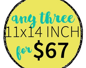 Any three 11x14 Inch Prints for 67 dollars- Multiple Print Discount. Order more prints save more money.