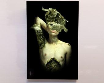 """Fantasy Art, fairytale, hand built frame, """"Bee Queen"""" Mounted Photo, Dark art, Beehive Art, bee, queen bee, green fairy, pixie, nude art"""