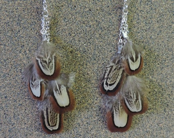 Real Feather Earrings