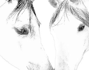 horse art print, Arabian horse print, horse photography, horse painting, horse décor, home décor art, horse wall art, equestrian art print