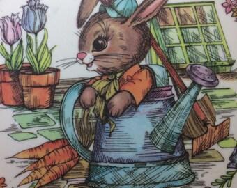 Peter Rabbit dish bunny plate Oneida Melmac plastic vintage kids kitchen 1969 silly animal