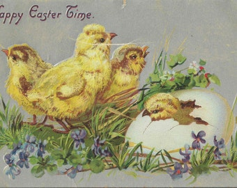 1908 Antique Easter Postcard by Tuck and Sons Featuring Four Fluffy and Darling Chicks Emerging on Easter Morning