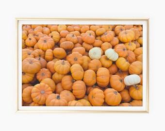 Pumpkin Prints Download, Pumpkin Photo, Autumn Decor, Fall Decor Prints, Halloween Wall Art Prints, Thanksgiving Decor, Printable Art Poster