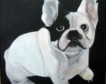 A cute French bulldog, linen canvas, 20 x 20 cms, painted in oils,
