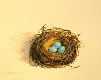 Medium sized original robins egg nest with three turquoise blue eggs. Original painting measures  9 1/2'' x 12 1/2''. Original watercolor  r
