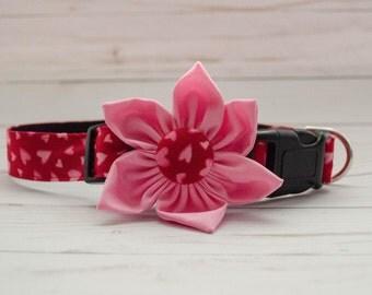 Be My Valentine Dog Flower Collar