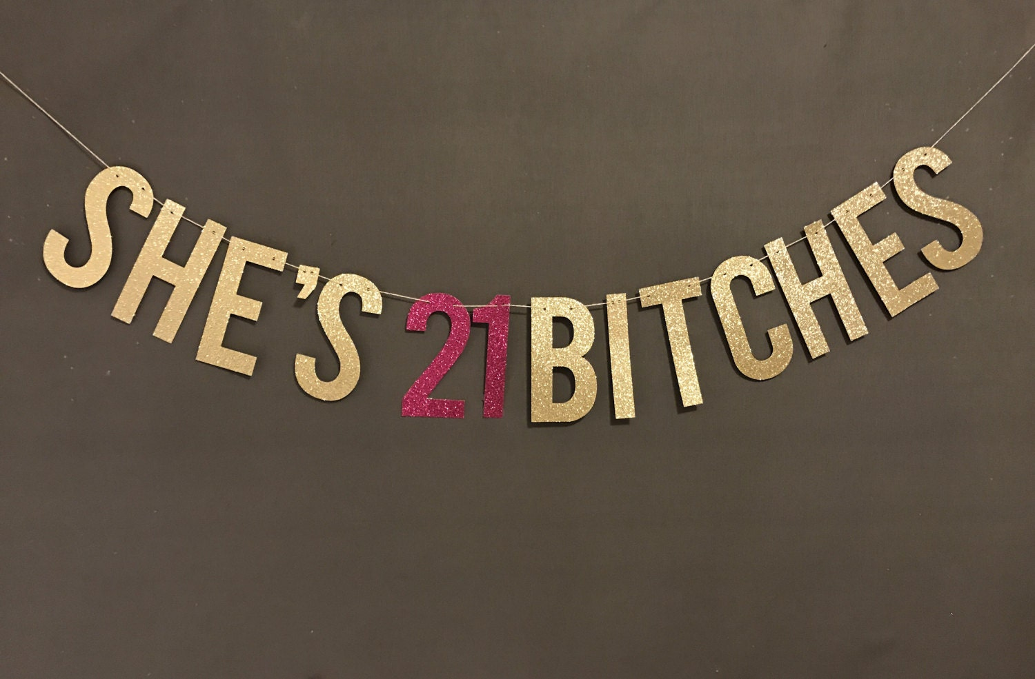She's 21 Bitches Banner 21st Birthday party banner