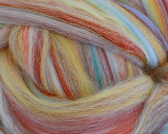 Dyed Merino - Hollyberry - Multicolor commercial dyed - combed top roving spinning felting fiber fibre arts - pink blue purple yellow cream
