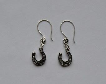 Horseshoe Swirl Ear Wire Earrings