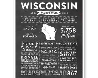State Print, Wisconsin State, Wisconsin Map, State Art, State Infographic, Mens Gift, State Facts, Wisconsin Art, Home Town Love