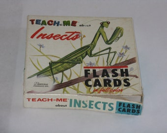 Vintage set of 48 insect flash cards 1968 educational teach me Renwal Products Inc