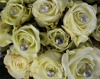 Roses and Diamonds Photographic Print