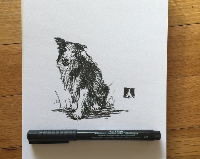KillerBeeMoto: Original Pen Drawing of a Border Collie Sketch Sheep Dog Sketch