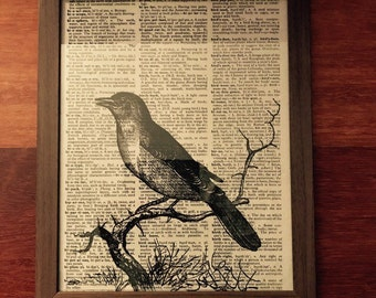 Blue bird print on vintage dictionary page