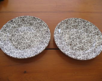 Pair of Staffordshire Ironstone May Blossom Side Plates
