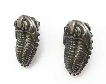 Trilobite Earrings - Invertebrate Paleontology, Pewter Jewelry, Fossil, Paleontologist