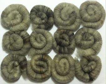 FCA Rolags - NATURAL GRAY - Wool, Merino, Polwarth