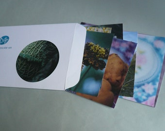 Autumn, eight postcards, postcards, set, minnievoss, analog photography, once, postcard, photographer