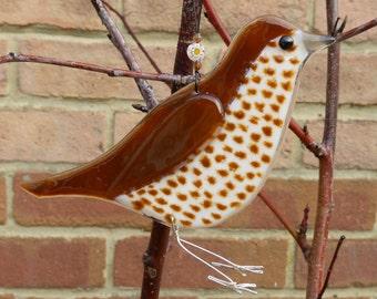Fused glass thrush, bird lover gift, garden bird, british birds, nature lover gift, garden ornament, british wildlife, thrush bird uk