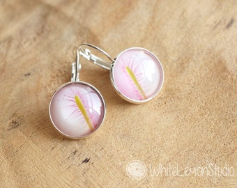 Sundew in pink - photograph underglass dome - earrings
