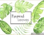 Watercolor  Leaves, Tropical leaves, Leaves clip art, Tropical clip art, Tropical leaves art, Tropical art print, Banana leaf,