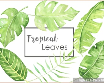 Tropical Leaves Download-Watercolor Clipart Set- Instant Download-Scrapbooking Leaves