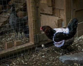 Chicken Dress Lot - 10 Chicken Dresses, 5 'Country' dresses and 5 'Come Cluck Me' dresses, Dresses for Chickens, Chicken dresses, Chickens