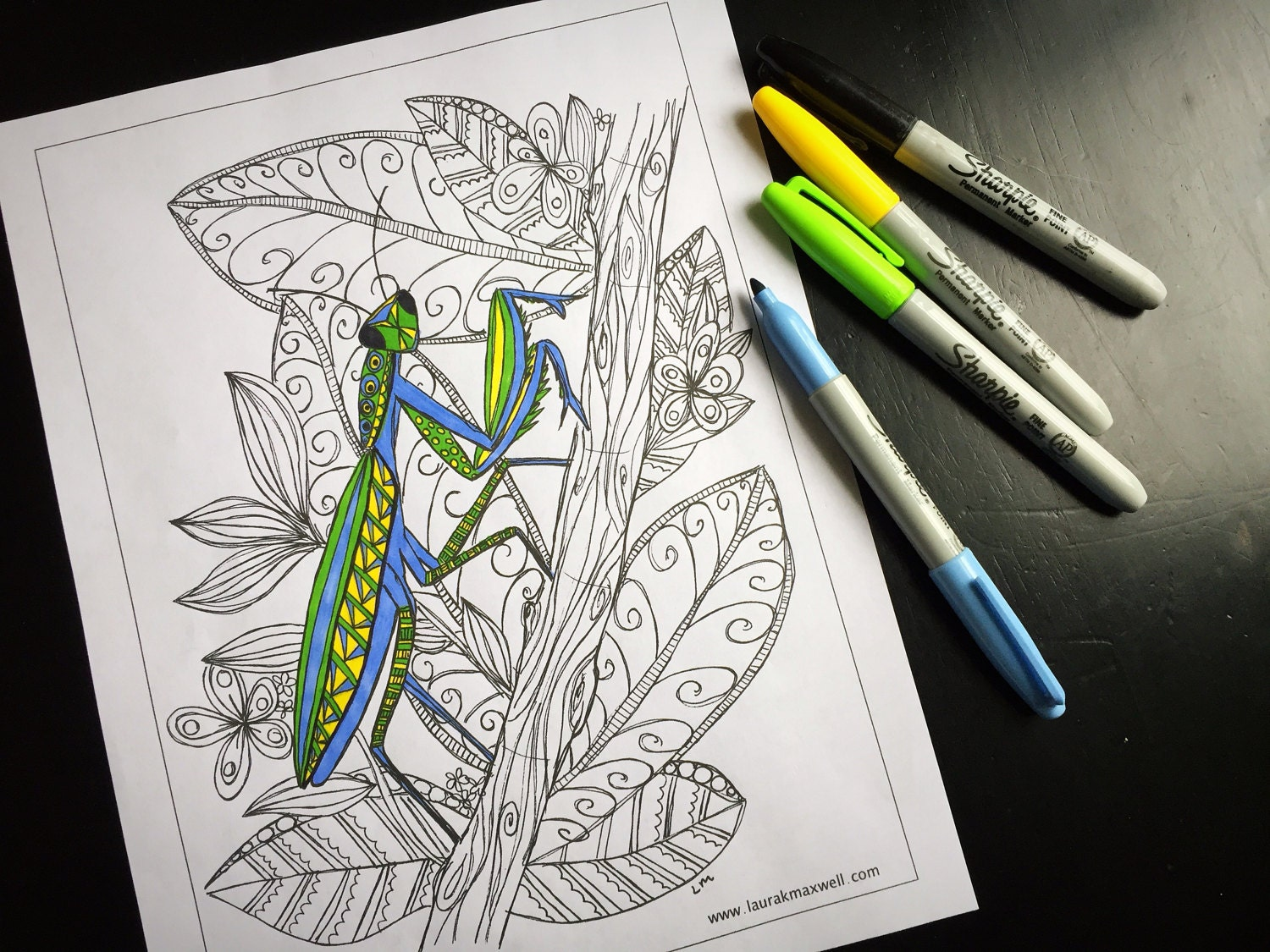 praying mantis coloring sheet for adults and kids instant