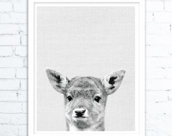 Deer Decor, Woodlands Nursery Decor, Baby Deer Print, Fawn Wall Art, Nursery Art, Woodlands Baby Deer Fawn, Printable Digital Download