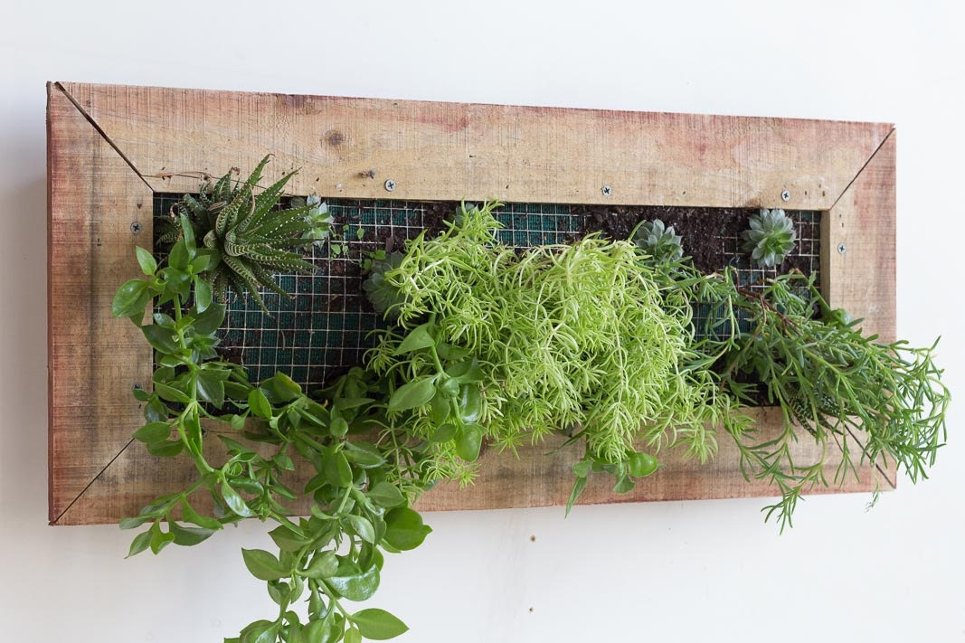 wooden wall planter box rectangular. Black Bedroom Furniture Sets. Home Design Ideas