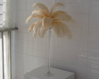 100pcs Champagne ostrich feather plumes,wedding centerpiece ,wedding table  decoration,table eiffel tower centerpiece  Frist Class Quality