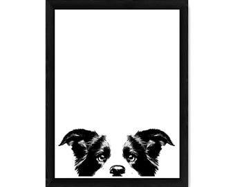 Border Collie Dog PRINT