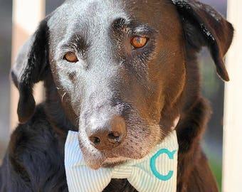 Monogram Dog Bow Tie Aqua Seersucker || Personalized Preppy Bowtie || Custom Gift by Three Spoiled Dogs