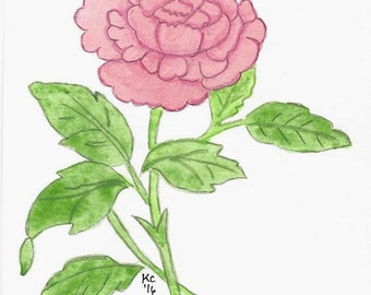Original Art Created With Watercolor Pencils - Small Pink Peony